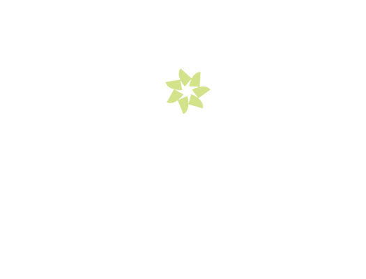 spark personal coach